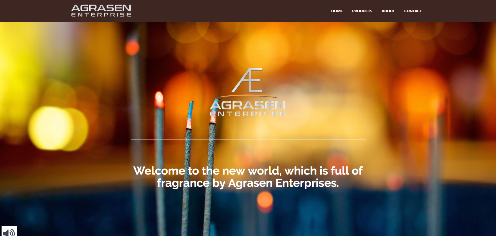 Agrasen Enterprise